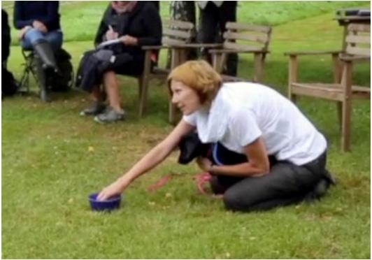 エヴァのインパルス・トレーニング