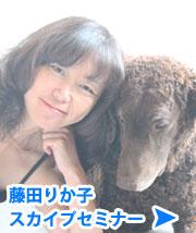 藤田りか子スカイプセミナー