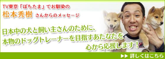 「ぽちたま」松本秀樹さんからメッセージ