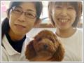 犬の保育園経営
