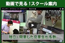 動画で見るドッグトレーナー養成スクール