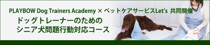 ドッグトレーナーのためのシニア犬問題行動対応コース
