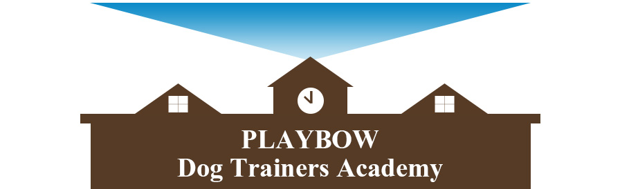 playbow-dogtrainers-academy