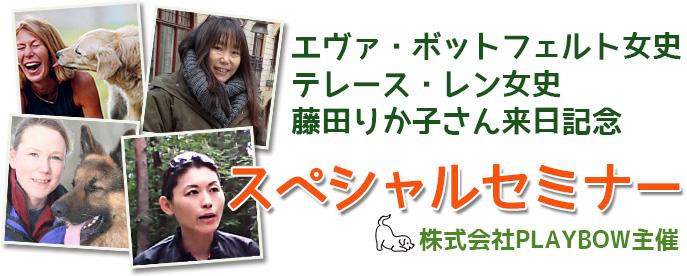 エヴァ女子、テレース女子、藤田りか子さん来日記念 株式会社PLAYBOW主催 スペシャルセミナー