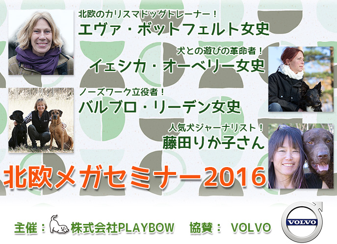 株式会社PLAYBOW主催スペシャルセミナー「北欧メガセミナー2016」