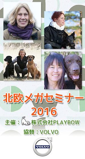 2016_mega-seminar-title_s