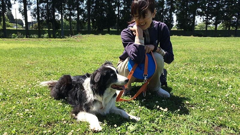 犬の保育園経営(プレイボゥドッグトレーナーズアカデミー卒業生)