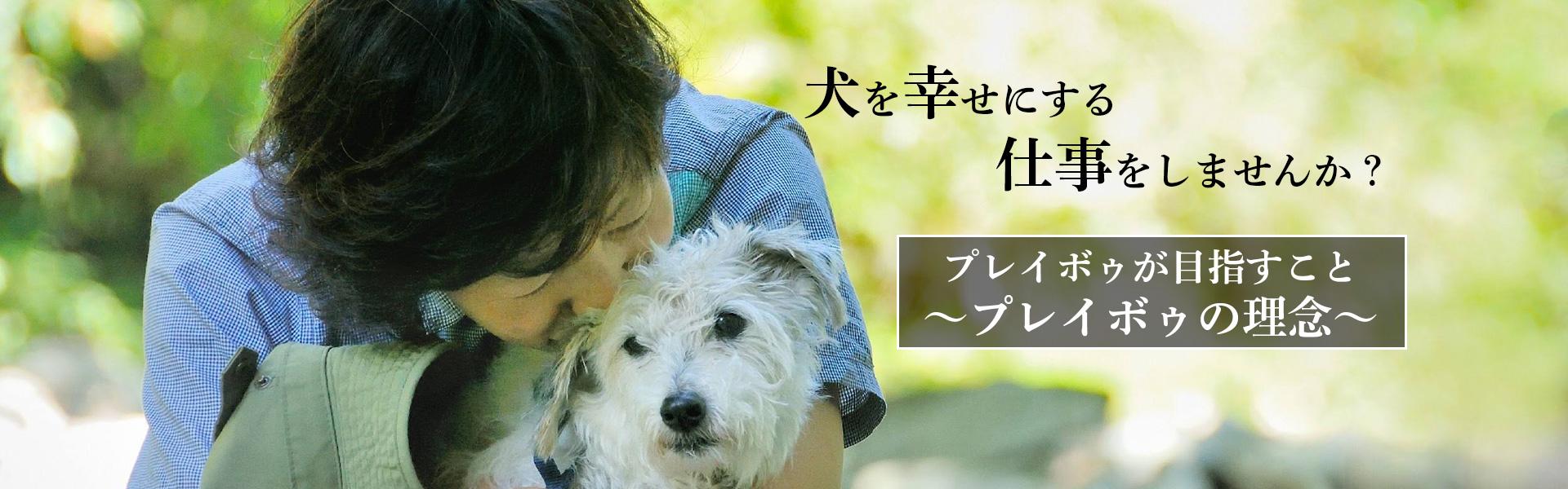 ドッグトレーナーという仕事が作る「犬を幸せにする世界」