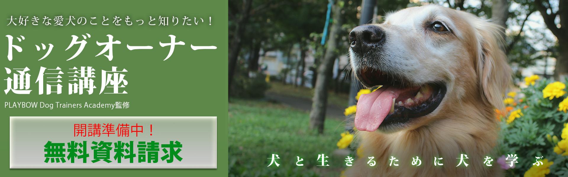 【オンライン】ドッグオーナー通信講座