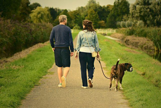 散歩をしている写真