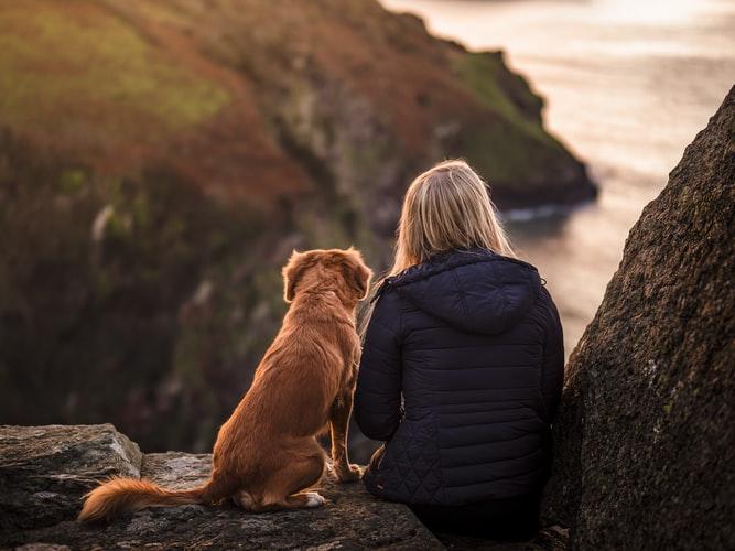 寄り添う犬と人