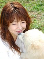 犬の保護活動・ボランティア