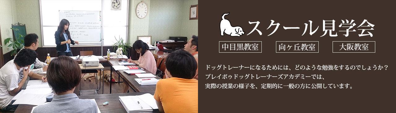 スクール見学会 ~ドッグトレーナーになるための授業を見てみよう!~