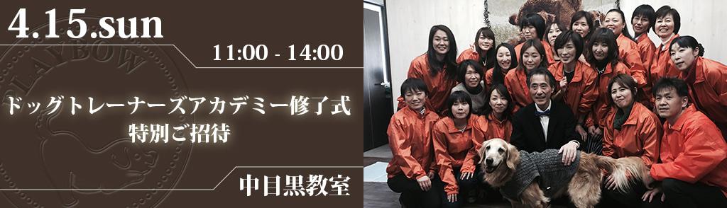 【特別ご招待】プレイボゥドッグトレーナーズアカデミー修了式