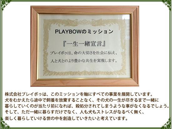 (株)プレイボゥのミッション