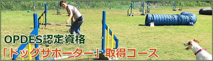 OPDES認定資格「ドッグサポーター」取得コース