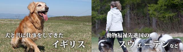 犬と共に仕事をしてきたイギリス 動物福祉先進国のスウェーデンなど