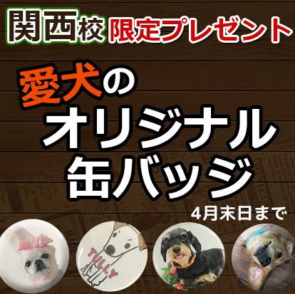 関西校限定!愛犬のオリジナル缶バッジプレゼント