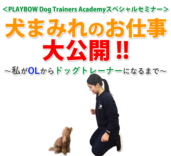 PLAYBOW Dog Trainers Academyスペシャルセミナー